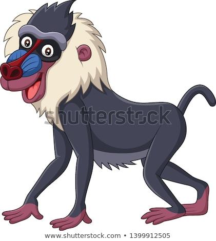 Cartoon Baboon Safari Stock photo © cthoman