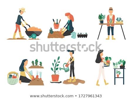 農家 · 農業の · 活動 · セット · ベクトル · 男性 - ストックフォト © robuart