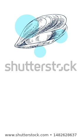 Small clam Marine Creature Poster in Sketch Style Stock photo © robuart