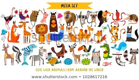 Set of cute African animals icons isolated on white background, crowned crane, lemur, elephant, gira Stock photo © MarySan