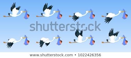Gólya természet keret illusztráció levél háttér Stock fotó © bluering