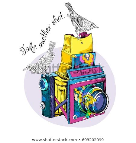 ретро камеры силуэта Vintage фотографии Сток-фото © JeksonGraphics