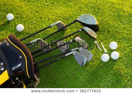 Golf club and golf ball on the lawn Stock photo © colematt