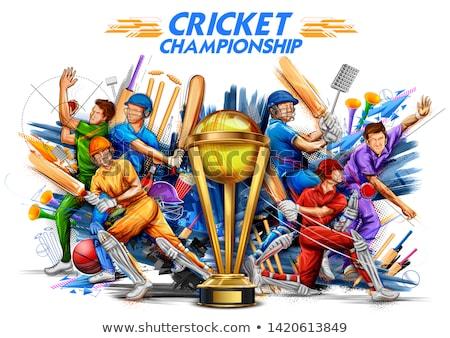 batsman playing game of cricket championship sports 2019 stock photo © vectomart