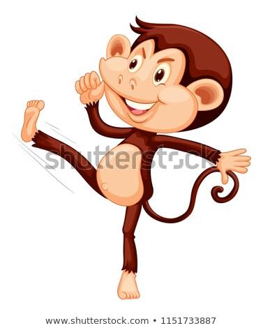 boldog · majom · fehér · művészet · jókedv · vicces - stock fotó © colematt