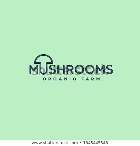 キノコ ロゴデザイン ビジネス 食品 サービス レトロな ストックフォト © djdarkflower