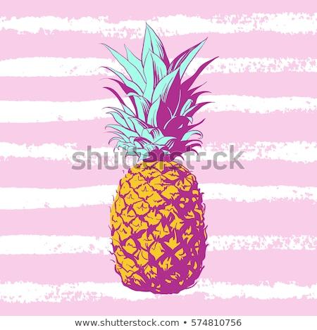 甘い 夏 パイナップル ビタミン 自然食品 ベクトル ストックフォト © robuart