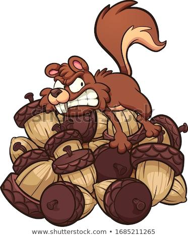 Cartoon squirrel with acorn Stock photo © jossdiim