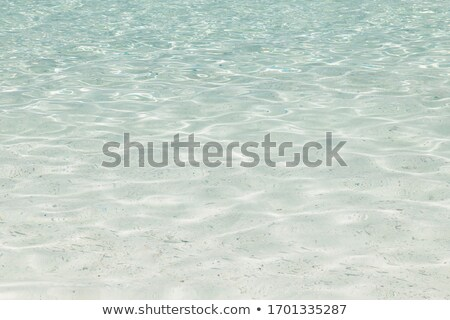 Seascape with clear transparent water Stock photo © vapi