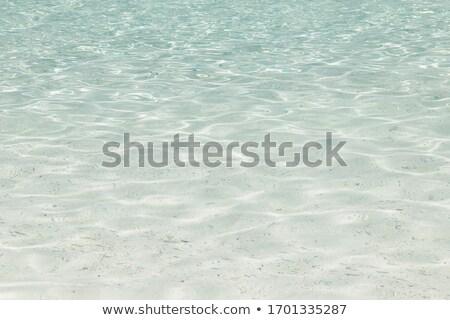 steen · caribbean · strand · wal · turkoois · zee - stockfoto © vapi