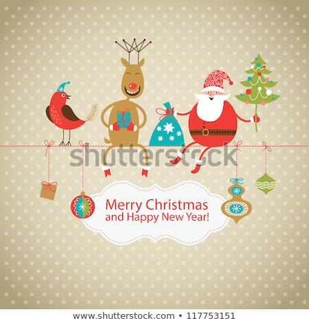 Karácsonyi üdvözlet vicces madarak karácsony terv vektor Stock fotó © balasoiu