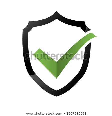 Segurança verificar ícone escudo Foto stock © Valeo5