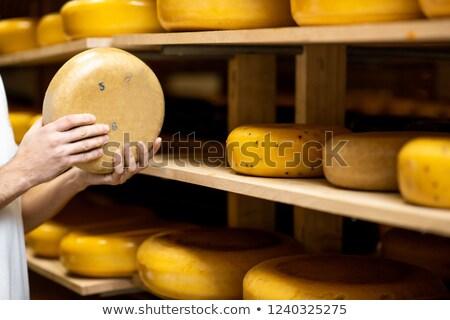 Altern Käse weiß blau Schimmel Business Stock foto © olira