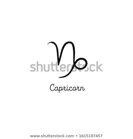 capricorn Stock photo © cidepix