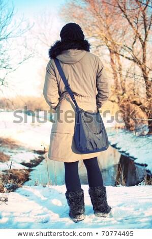 lodu · śniegu · biały · przestrzeni · pozostawia - zdjęcia stock © hasloo