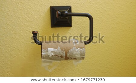 Carta igienica bianco clean WC malati Foto d'archivio © broker