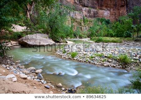 Córrego vale Utah paisagem fundo montanha Foto stock © jaymudaliar