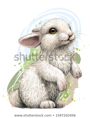 Vector Easter Rabbit Stock photo © RamonaKaulitzki