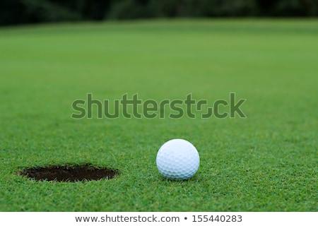 Verde saco de golfe bola isolado branco Foto stock © Winner