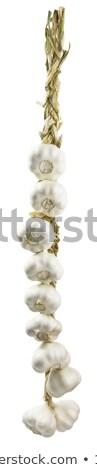 Bos knoflook nauwkeurig achtergrond witte plantaardige Stockfoto © ozaiachin