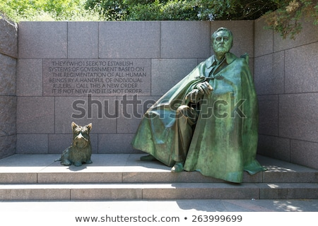 Standbeeld Washington DC vroeg wazig japans Stockfoto © backyardproductions