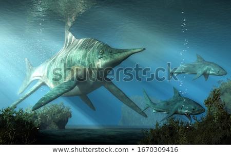 2 サメ 3dのレンダリング ビッグ 青 サメ ストックフォト © Elenarts