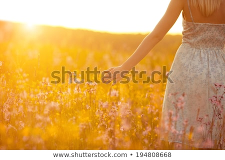 woman in field backlight Stock photo © Paha_L