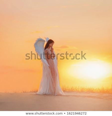 天使 · 女性 · 鳩 · 少女 · ファッション · 光 - ストックフォト © BasheeraDesigns
