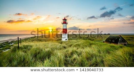 Deniz feneri ev manzara yaz okyanus seyahat Stok fotoğraf © RAM