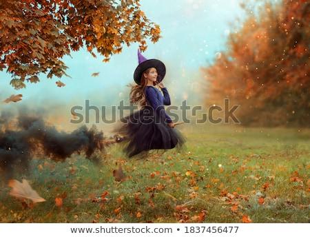 Souriant sorcière pourpre gothique halloween costume Photo stock © Elisanth