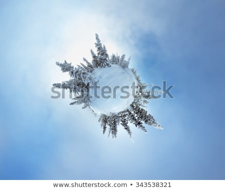 Miniature planet with pine forest Stock photo © Kirill_M
