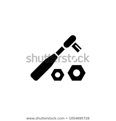 Soket çelik fındık yalıtılmış beyaz Stok fotoğraf © doupix
