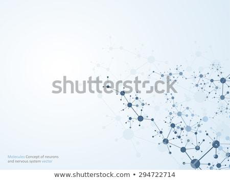 Cromossoma abstrato ciência digital microscópio humanismo Foto stock © 4designersart