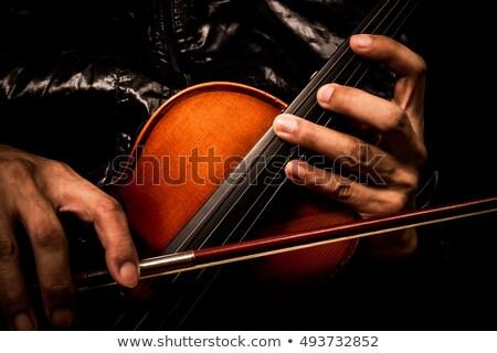 cello · geïsoleerd · zwarte · viool · jazz - stockfoto © sumners