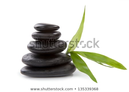 Stock photo: Zen pebbles balance. Spa and healthcare concept.