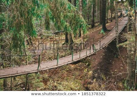 Stock photo: Narrow cable suspension footbridge