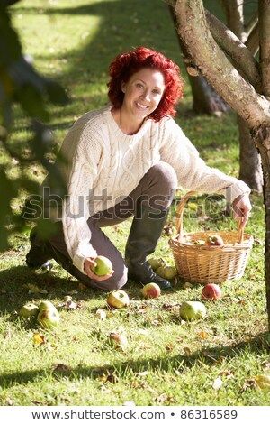 woman collecting apples off the ground stock photo © monkey_business