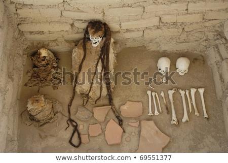Ancient mummy at Chauchilla in Nazca, Peru Stock photo © Hofmeester