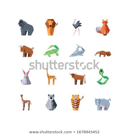 Toplama geometrik çokgen hayvanlar kaplan zürafa Stok fotoğraf © BlueLela