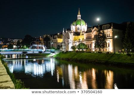 romántica · luna · llena · cielo · de · la · noche · cielo · luz · conejo - foto stock © alphababy