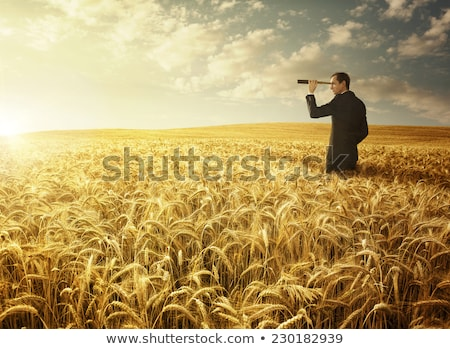 businessman on a meadow at sunrise stock photo © konradbak