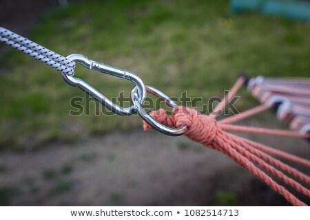 Green Carabiner Hook with Connection. Stock photo © tashatuvango