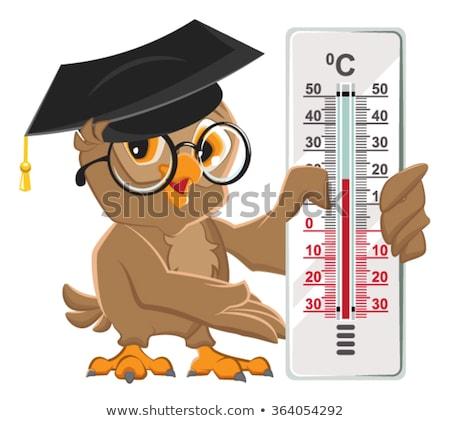 Baykuş öğretmen termometre celsius Stok fotoğraf © orensila