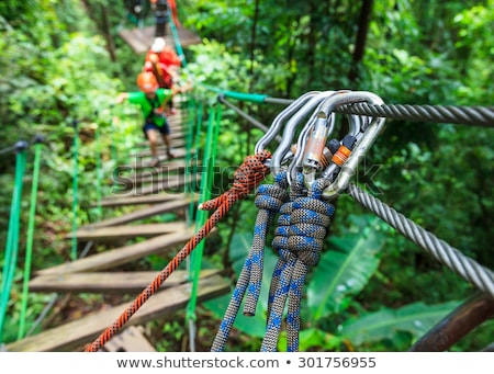 girl climbing in high rope course stock photo © kzenon