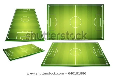 Green vector soccer field stock photo © jabkitticha