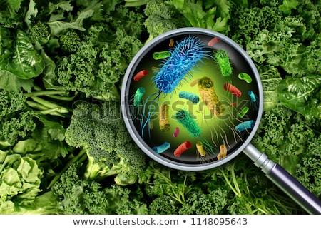 baktériumok · illusztráció · izolált · fekete · absztrakt · terv - stock fotó © lightsource