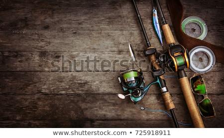 Pescaria ferramentas tabela natureza peso Foto stock © racoolstudio