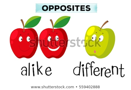 Opposite words for alike and different Stock photo © bluering