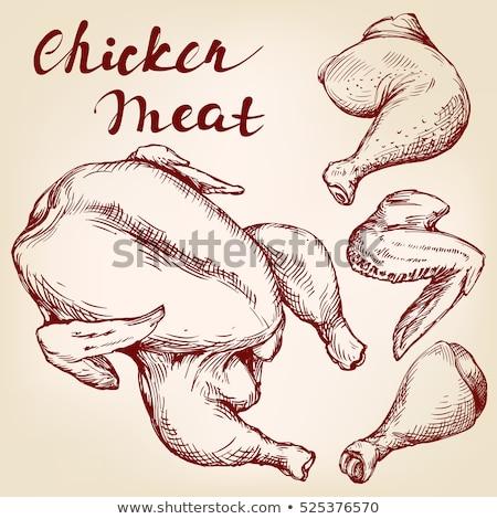 全体 · 鶏 · スケッチ · アイコン · ベクトル - ストックフォト © rastudio