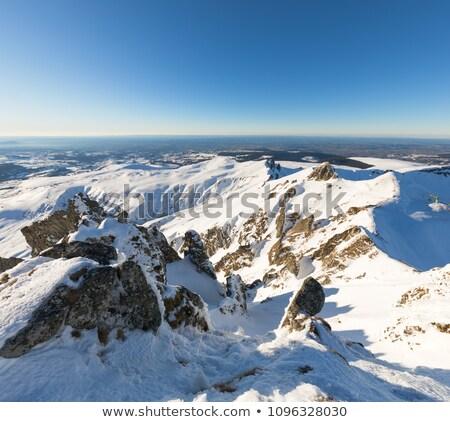 View from Puy de Sancy Stock photo © tilo